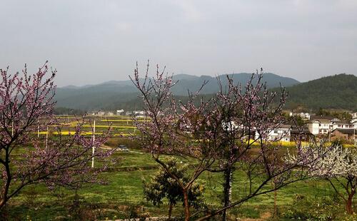 十里桃花江_贵州旅游最佳路线推荐