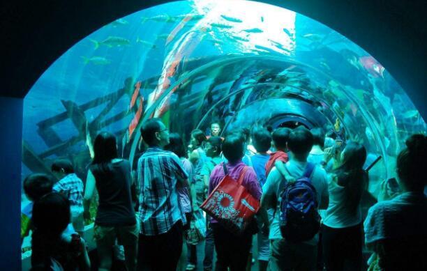 新加坡 马来西亚双国7天6晚亲子游(含一天新加