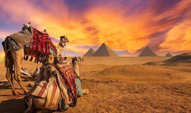 【连线】埃及-迪拜10球王会电竞app下载五星奢华体验